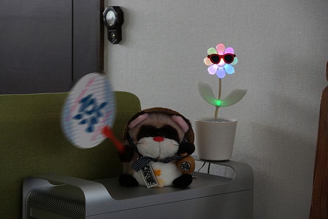 Flower-Rock2-2.jpg