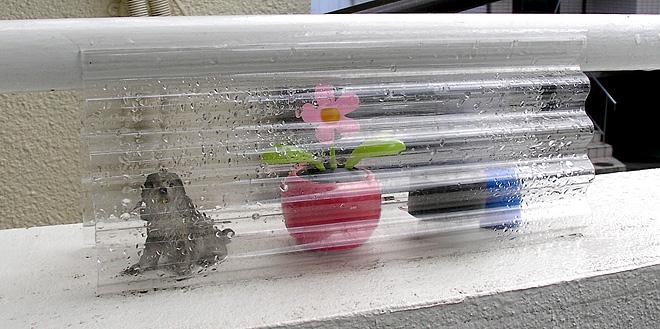 solar-Flower-8.jpg